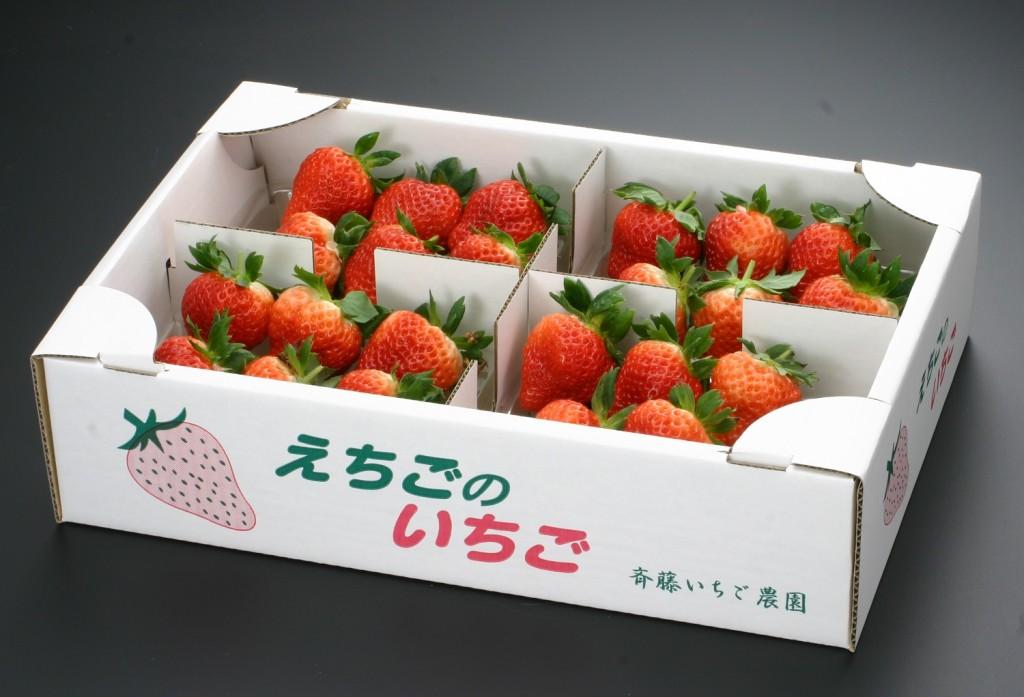 saitou-ichigo-nouen-c01