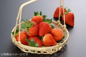 saitou-ichigo-nouen-e01
